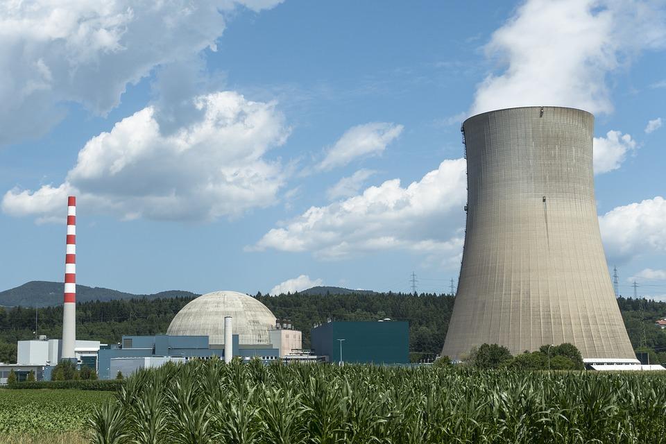 kernenergie dieren